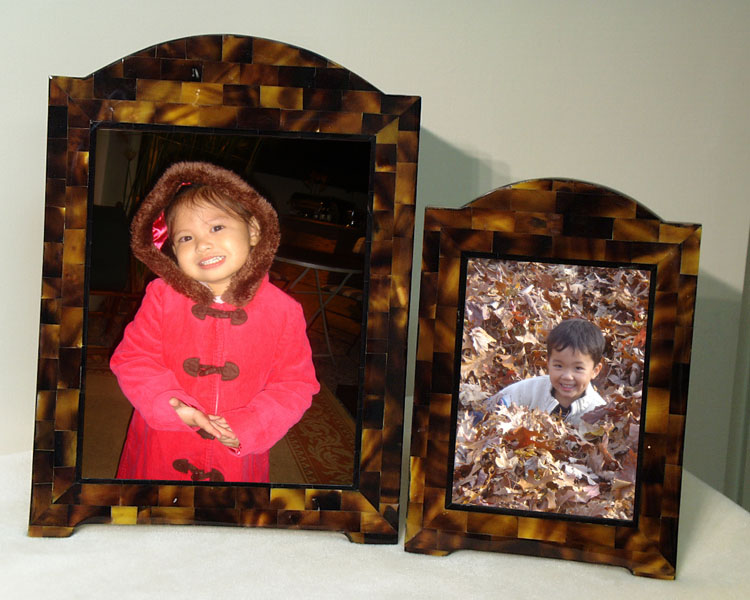 8x10 Arch Frame Young Pen Seashell